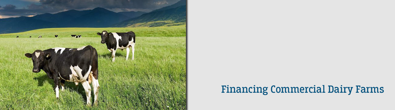Federal Bank - Financing Commercial Dairy Farms